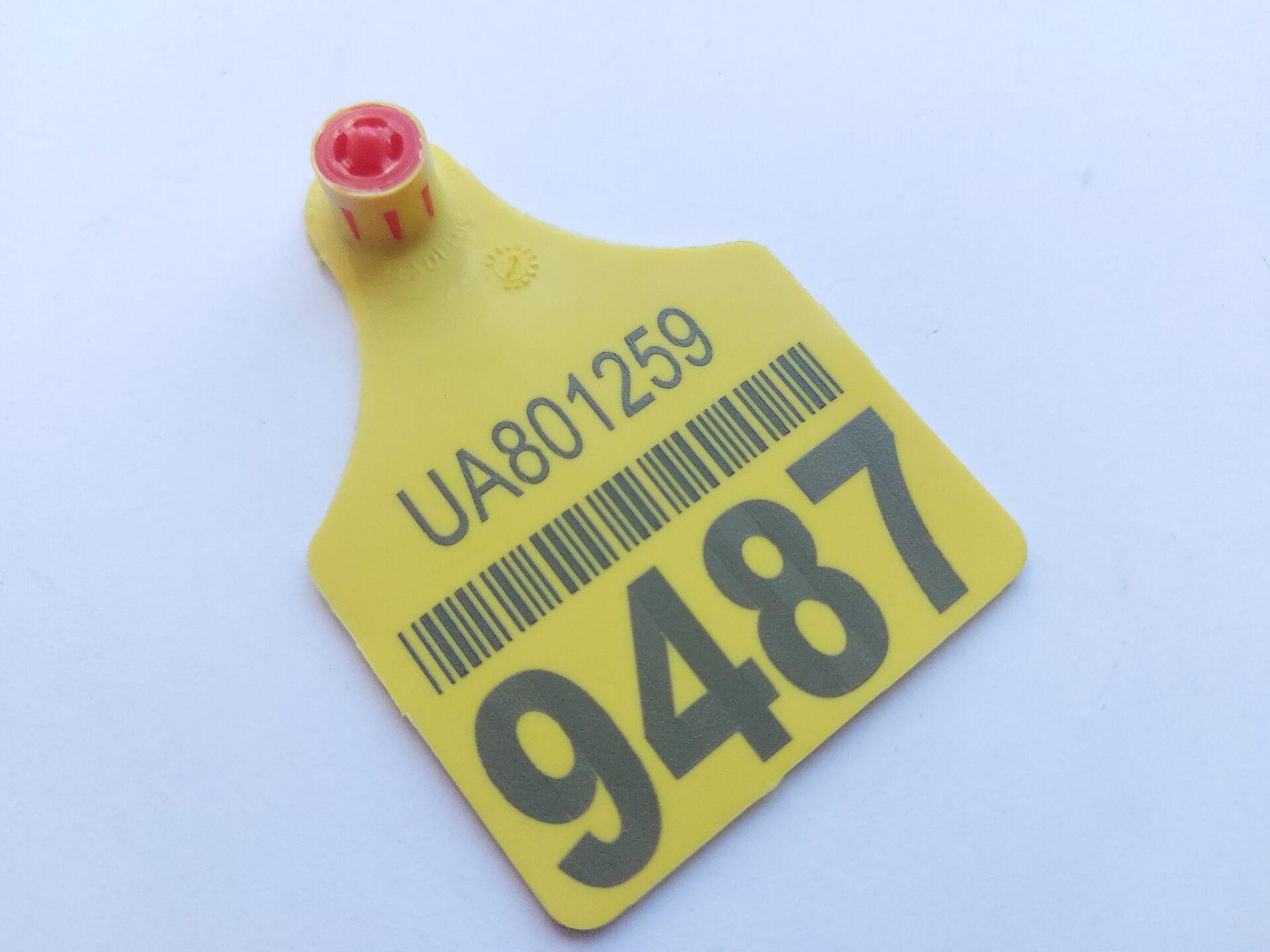 Установка напівавтоматичного маркування бирок для ідентифікації тварин.
